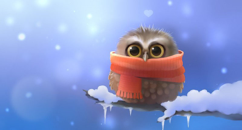 owl-bird-snow-winter-drawing-scarf-cartoon-cute-eyes-pov-pics-200728