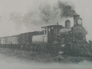 Tren carguero, atravesando la zona geográfica rural.