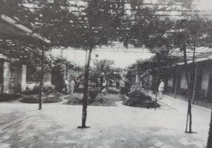Patio del antiguo Colegio Nacional, donde puede observarse, la clásica parra, que le otorgaba el lugar, un pintoresco aspecto, de verde colorido, encanto y ensueño.