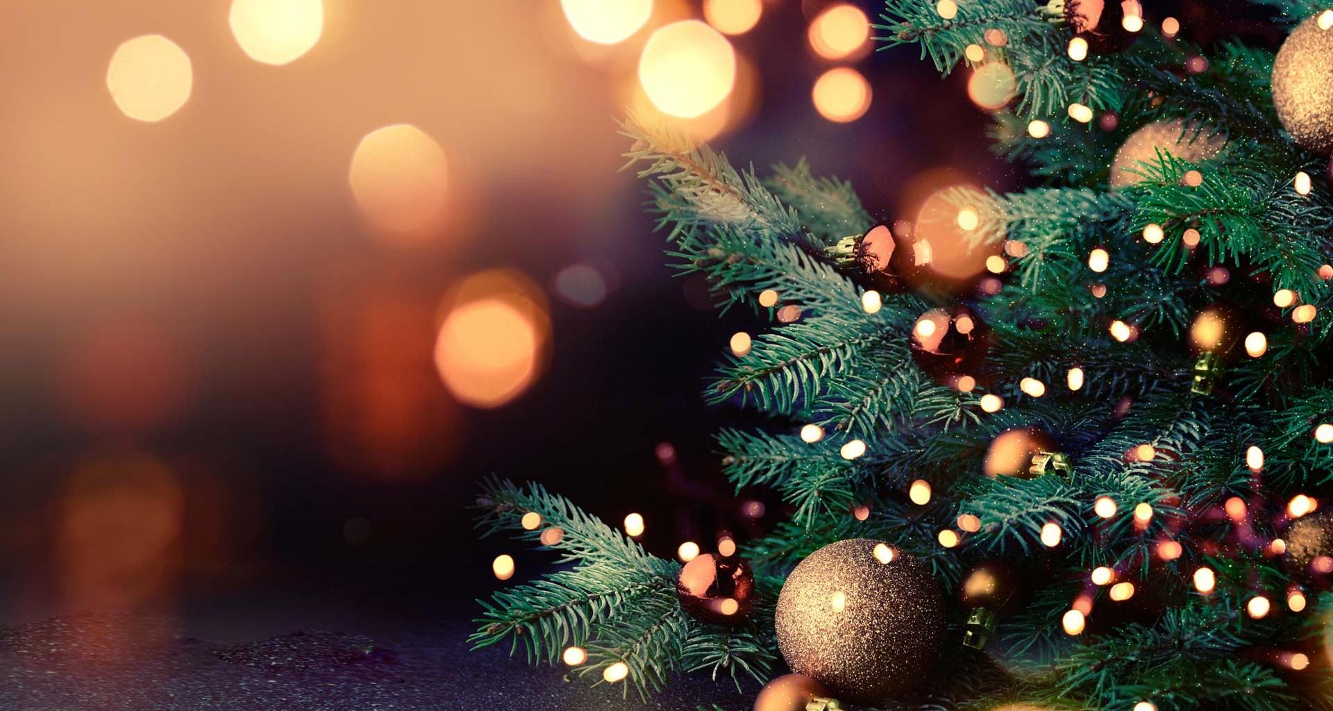 Las Fiestas de Navidad, Fin de Año y Año Nuevo y el Archivo Literario Municipal