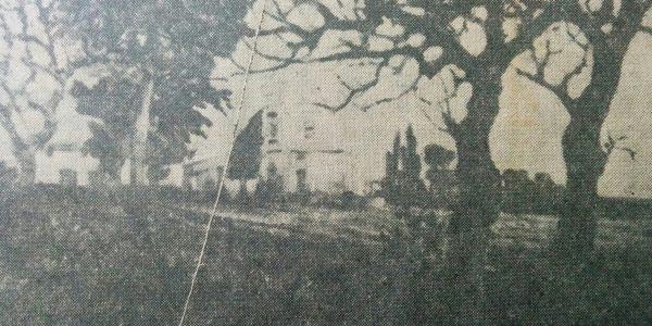 La quinta de Don Virginio Strini, a través de un óleo, del inolvidable pintor español, radicado en Chivilcoy,  Don Juan Navarro Granados, realizado en 1927.